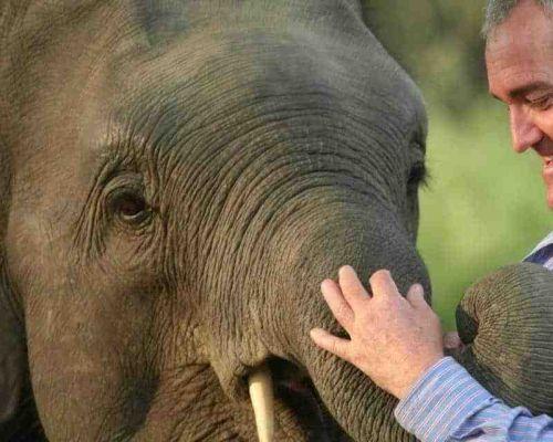 Andrew mclean elephant kush prasad 1280x640